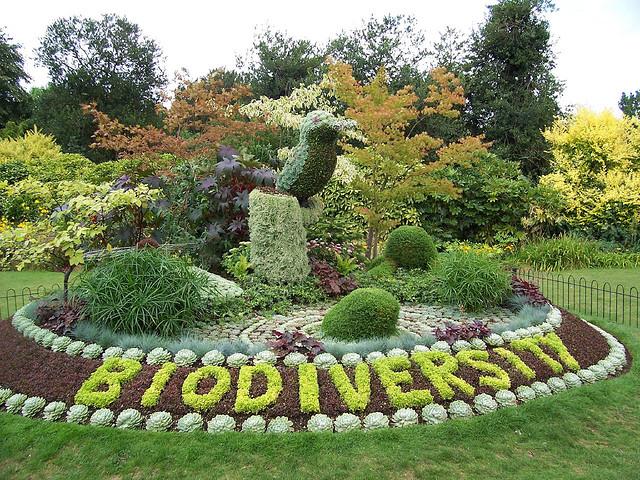 TTIP non fa rima con Biodiversità