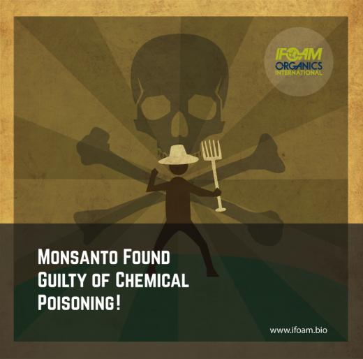 La Francia conferma la condanna per Monsanto