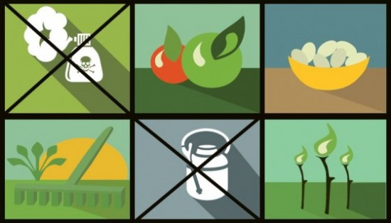 Pesticidi: un campione su due di frutta è contaminato