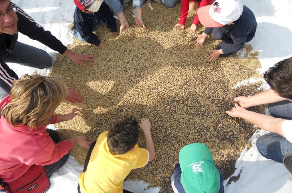 Verso il Forum Regionale Agricoltura Sociale Puglia