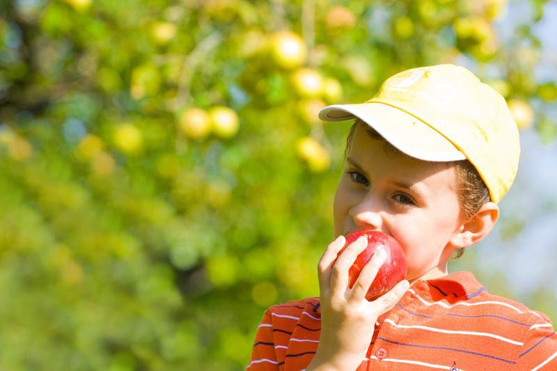 Mangiare bio fa bene ed evita, in modo significativo, l'esposizione ai pesticidi
