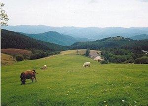 biodistretto-val-di-vara