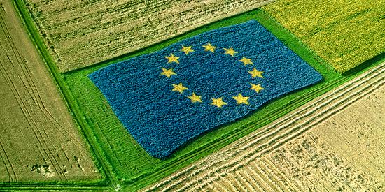 Appello di 3600 scienziati Europei all'UE: la futura PAC deve smettere di distruggere la Natura