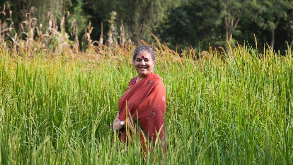 Vandana Shiva a Bergamo per il convegno sull'agricoltura sociale – 11 ottobre