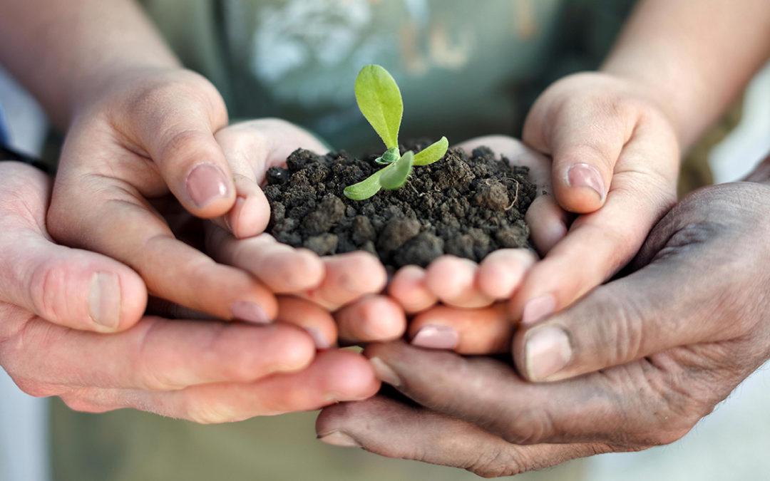 """Agricoltura biologica inclusiva e sociale: un modello per il futuro. Un approfondimento su """"Vita"""""""