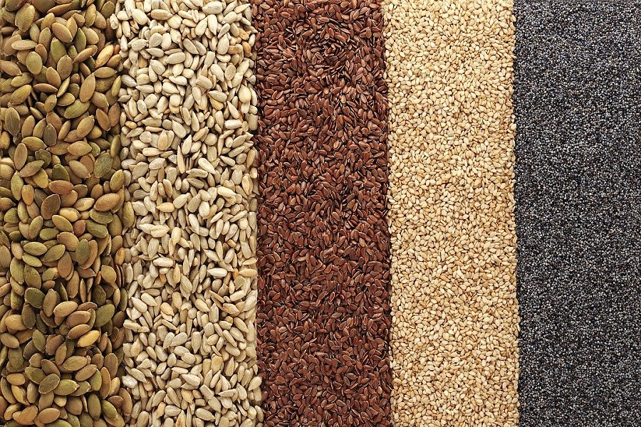Serve un nuovo piano sementiero per l'agricoltura biologica. Otto enti e associazioni scrivono una lettera al Ministro Martina