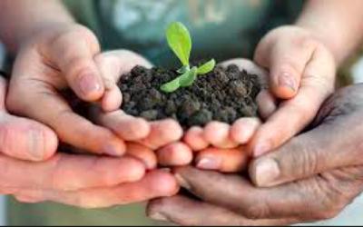 AIAB a Centinaio: bene l'apertura al bio ma tante questioni da affrontare. Urge confronto