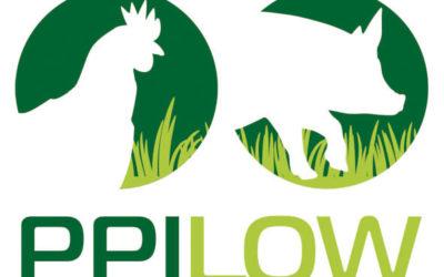 Ppilow: migliorare sostenibilità e benessere di pollame e suini bio. Conferenza 25 e 26 gennaio