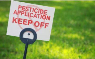Pan Pesticidi: diventi strumento per una vera transizione ecologica. Appello di 11 associazioni
