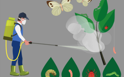 Il grande bluff della sostenibilità dei pesticidi