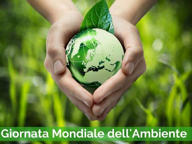 Giornata Ambiente: Quando la mancanza di visione politica e la burocrazia sono un freno al cambiamento