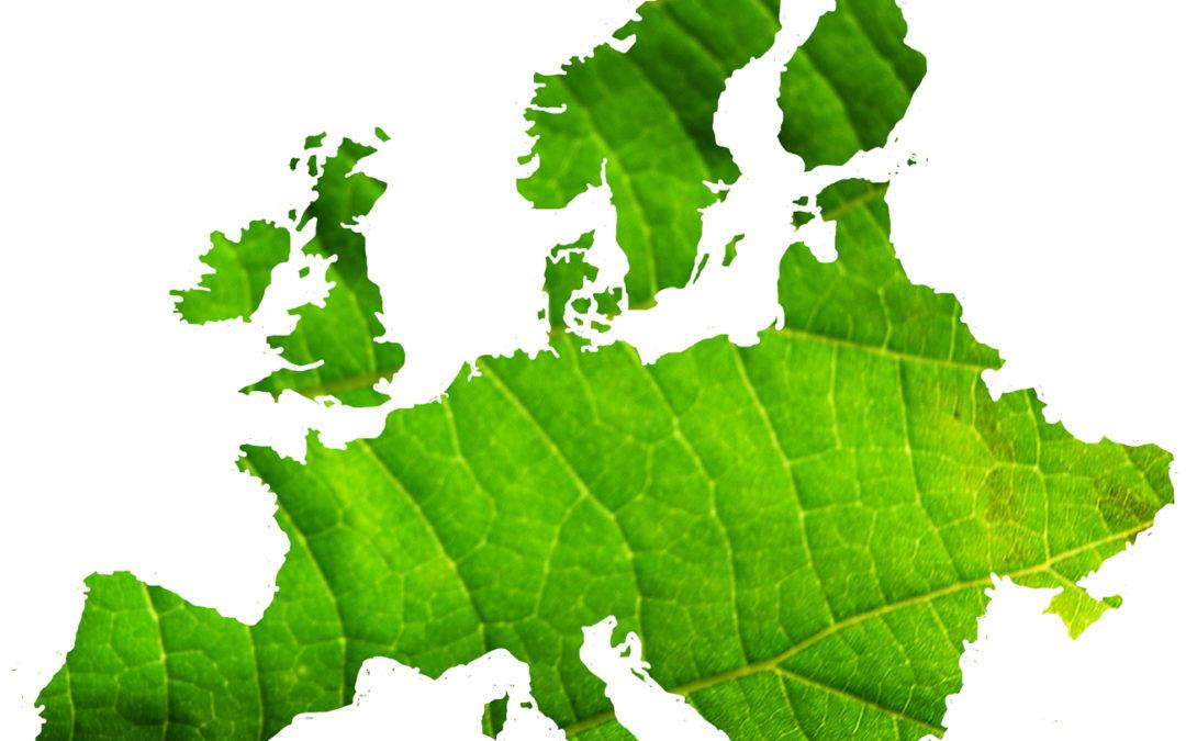 Consiglio Europa Agri Fish: Italia sostenga riforma Pac in linea con Green Deal