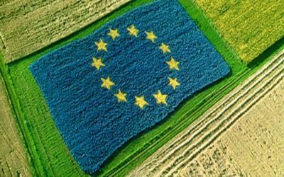 Action plan sull'agricoltura biologica. Cosa succede in Europa