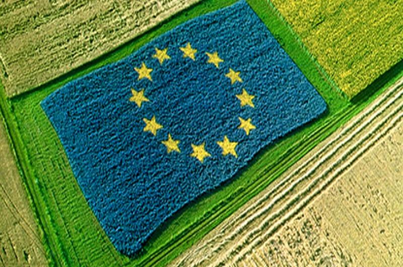 Nuovo Regolamento UE: bene lo spostamento dell'entrata in vigore al 2022