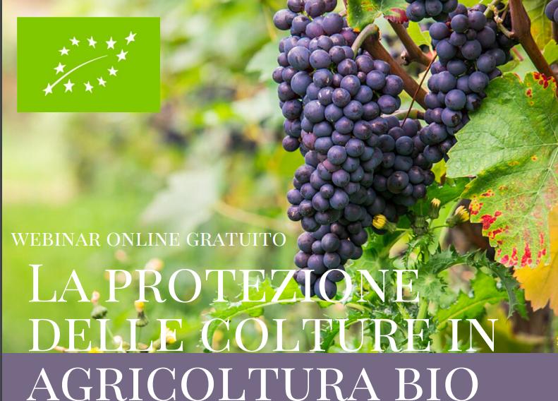Bio: la protezione delle colture. Webinar gratuito