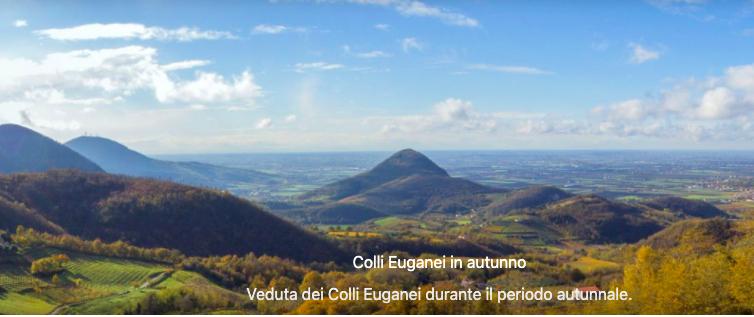 Biodistretto Colli Euganei: al via la promozione di mense scolastiche bio