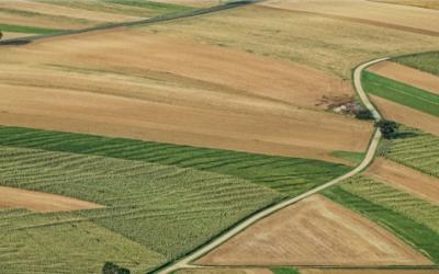 Il trend del biologico in Italia: riflessioni, possibili scenari e previsioni. Webinar 25 giugno aperto a tutti