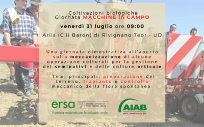 Giornata dimostrativa macchine in Friuli