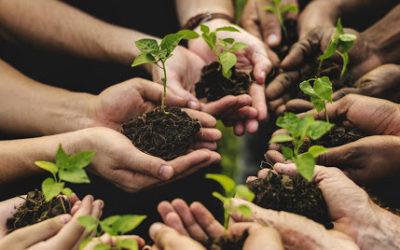 L'Associazione Nazionale di BioAgricolturaSociale in veste ufficiale al MIPAAF
