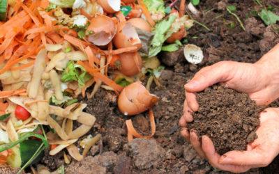 'A…B…Compost': sostanza organica di valore nel bio. Se ne parla a La Stecca a Milano