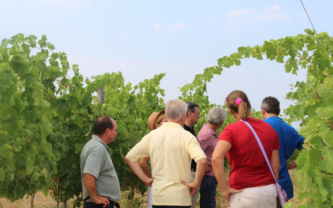 Riprendono le attività di Bio Land, il progetto divulgativo sul bio promosso da AIAB Calabria