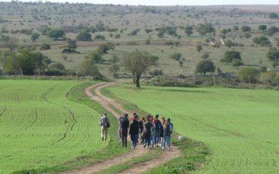 Cu.Bi.Co: Un percorso partecipativo verso il Biodistretto Sociale delle Murge
