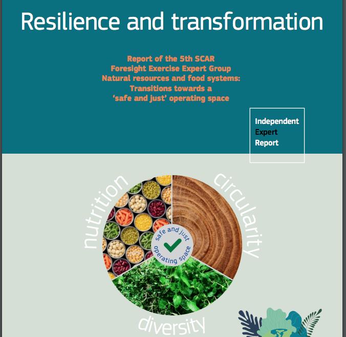 Resilienza e trasformazione: Relazione del 5° gruppo di esperti SCAR