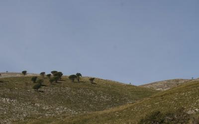 Biodiversità e tutela dell'ambiente: il 20 maggio appuntamento con Bioland