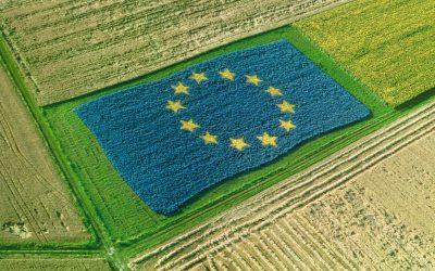 """AIAB su Rapporto Corte dei Conti EU:  """"Un'altra bocciatura della PAC. Il biologico chiede maggiori risorse in Ricerca e Formazione"""""""