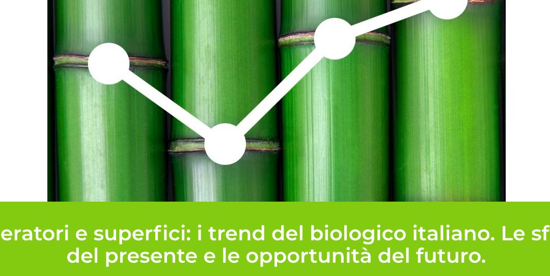 B/Open: Operatori e superfici: i trend del bio italiano. Webinar 24 giugno