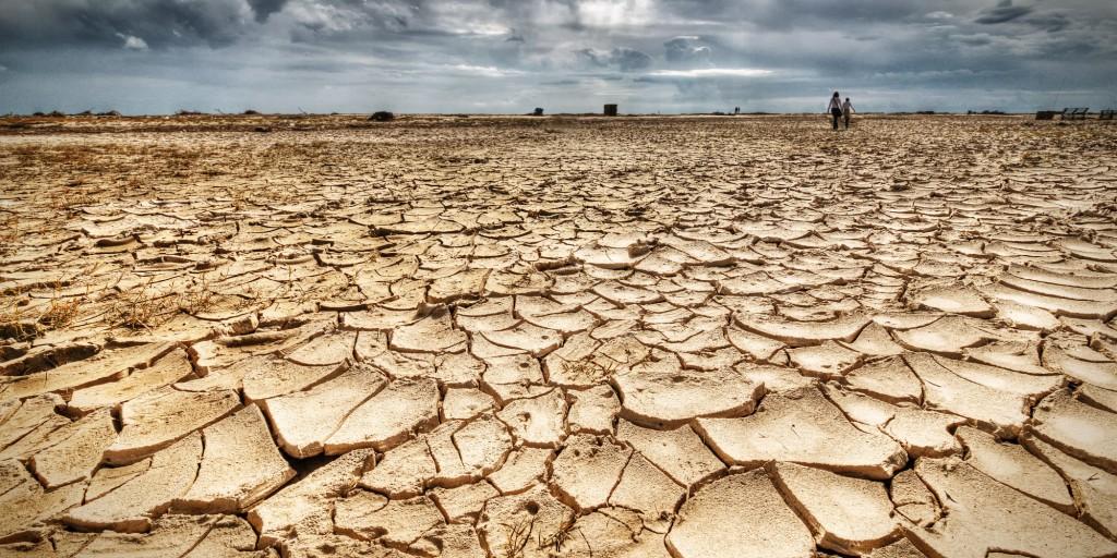Giornata mondiale contro la siccità: Il bio è la soluzione per evitare la desertificazione e il consumo dei suoli