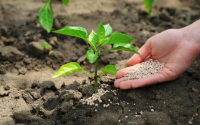 Antiparassitari e fertilizzanti ammessi nel bio: verso il nuovo Reg. UE 848/2018